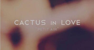 cactus in love petit air