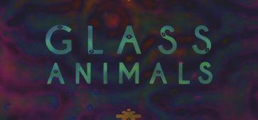 glass animals black mambo Leaflings