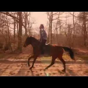 bense-portrait-chinois-clip-nouvel-album ccculte