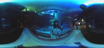 Emily Loizeau - Eaux sombres en live acoustique 360°