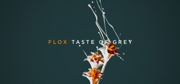 Taste of grey flox album ca c'est culte