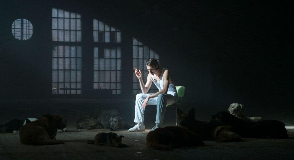 """Clip du jour : """"Malade"""" de Roméo Elvis"""